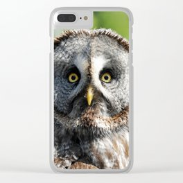 Owl_20180219_by_JAMFoto Clear iPhone Case