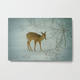 Deer Winter Metal Print