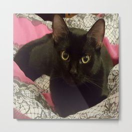 A Black Cat's Love Metal Print