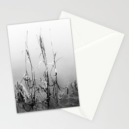 Echoes Of Reeds 1 Stationery Cards
