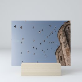 Birds Flying on the Blue Sky, Zadar Croatia Mini Art Print