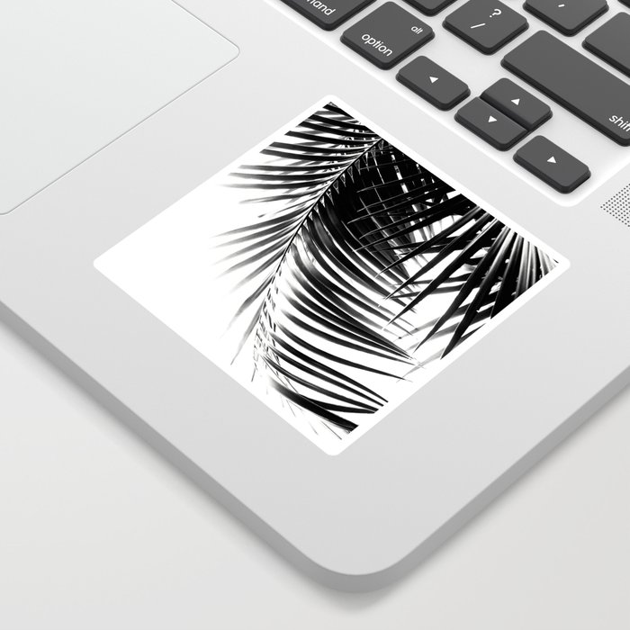 Palm Leaves Black & White Vibes #1 #tropical #decor #art #society6 Sticker