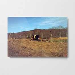 There's a Cow on That Hill Metal Print