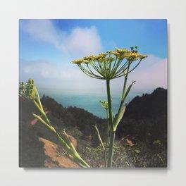Windy Wild in Marin Headlands Metal Print