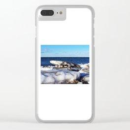 Frozen Salamander Clear iPhone Case