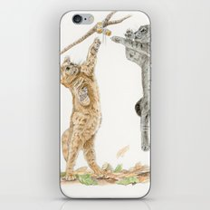 Cats Playing iPhone & iPod Skin