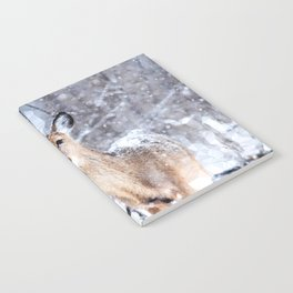 Deer In Snow Notebook