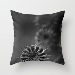 432 Hz Throw Pillow