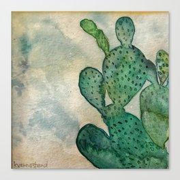 Cactus, My Cactus Canvas Print