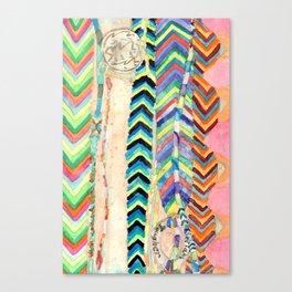 Friendship Bracelets Canvas Print