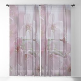Delicate Pink Blossoms Sheer Curtain