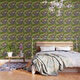 Common Merganser Trio Wallpaper