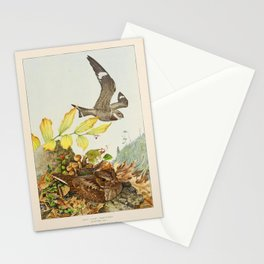 Nighthawk Whip poor will2 Stationery Cards