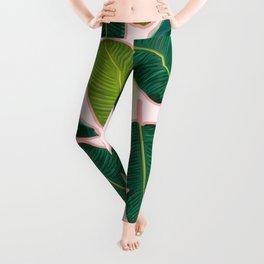 Banana Leaf Blush #society6 #decor #buyart Leggings