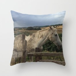 Been Rolling In Mud Throw Pillow