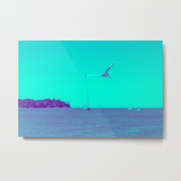 Teal view of seagull flying over sailboats. Metal Print