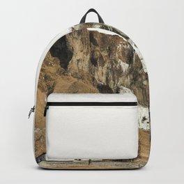Someone's Back Yard II Backpack