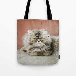 Cat On The Ledge Tote Bag