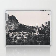 Rock Garden Laptop & iPad Skin