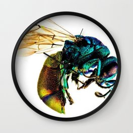 Multi-colored Cuckoo Wasp Portrait #2 Wall Clock