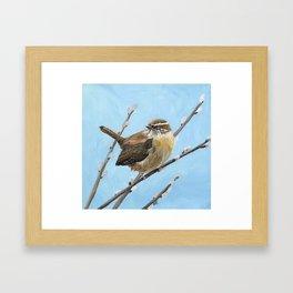 Brown House Wren Bird Art Framed Art Print