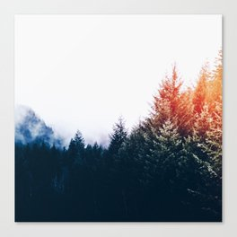 Waking up in a forest Canvas Print
