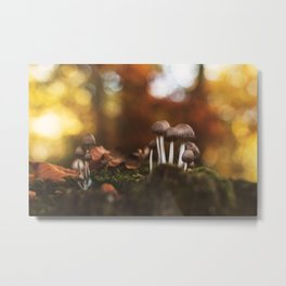 Woodworld Metal Print