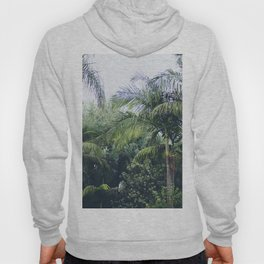 Palm Trees in a Tropical Garden Hoody