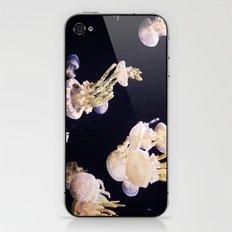 The Jellies iPhone & iPod Skin