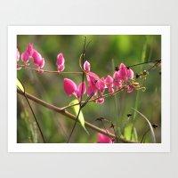 Flower pink coral vine Art Print