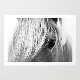 Horse Face Art Print