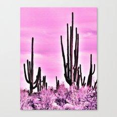 Wild Cactus Canvas Print