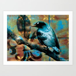 Fleur De Bluebird Art Print