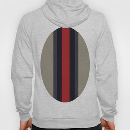 High Fashion Designer Style Stripes Hoody