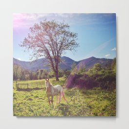 Unicorn Horse | Rogue River, Oregon Metal Print