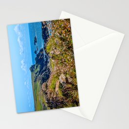 Lizard Walk - Crane Ledges Stationery Cards