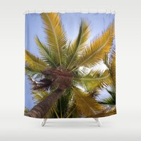 coconut wishes Shower Curtains featuring Coconut Tree by suzyoconnor