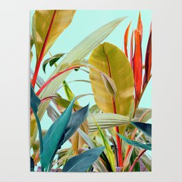 Tropical Jungle Poster