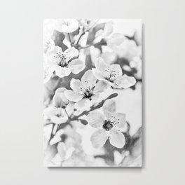 Fruit Or Flower? Metal Print