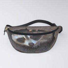 Hiding baby raccoon Fanny Pack