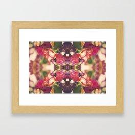 Sunset of Roses Framed Art Print
