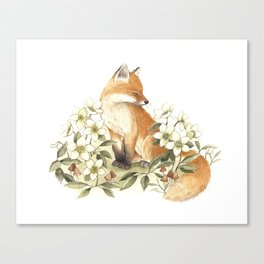 Springtime Fox Canvas Print