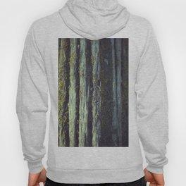 Mossy tree bark Hoody