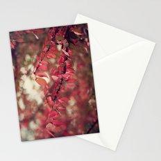 Crimson Blush Stationery Cards