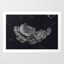 subtle signs of the other world Art Print