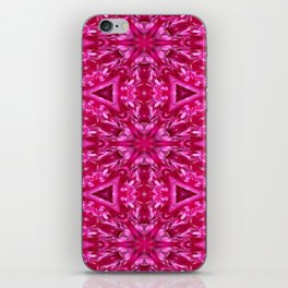 Pink Cabbage Rose Triangles 5072 iPhone Skin