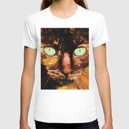 Fluffy's eyes, painterly T-shirt