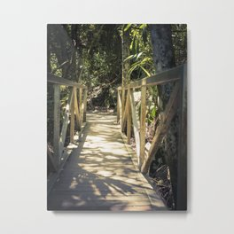 Nature Walk Footbridge Metal Print