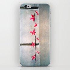 find me iPhone Skin