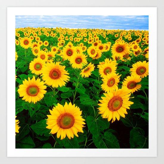 Sunflower art decoration ideas best design Art Print